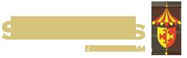 stchad_logo